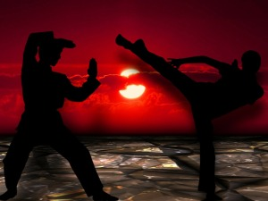 Martial artists at sunset