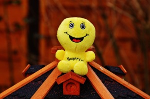 happy-1183599_1920